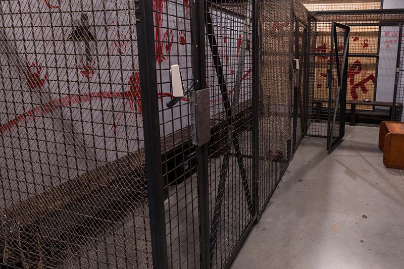 Locked Room Captivity Room Picture